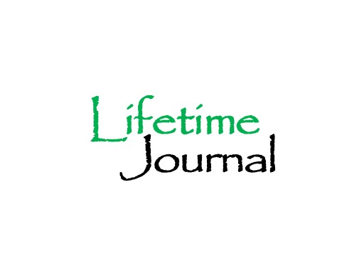 lifetime journal domain